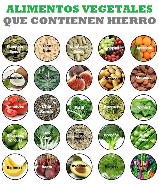 El hierro en la dieta vegetariana el arte de vivir espa a - Que alimento contiene mas calcio ...