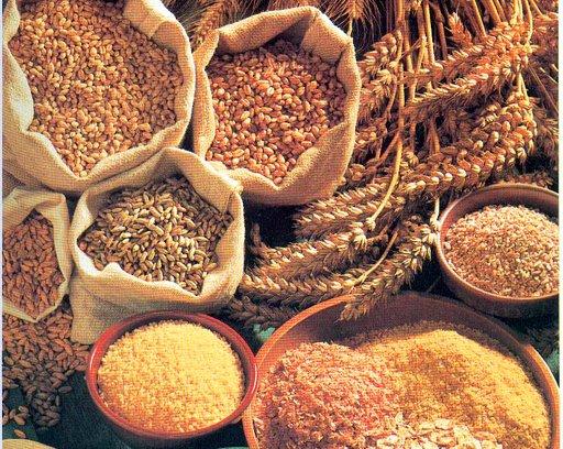 cereales-organicos