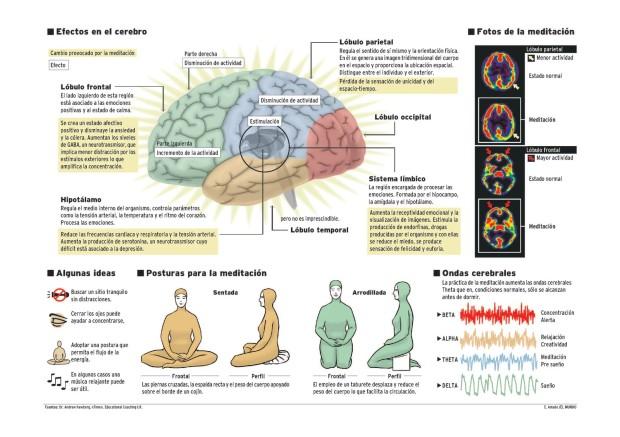 efectos-en-el-cerebro